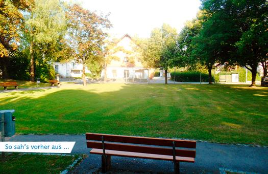 Lustenau-Park-Hasenfeld-Bestand-1